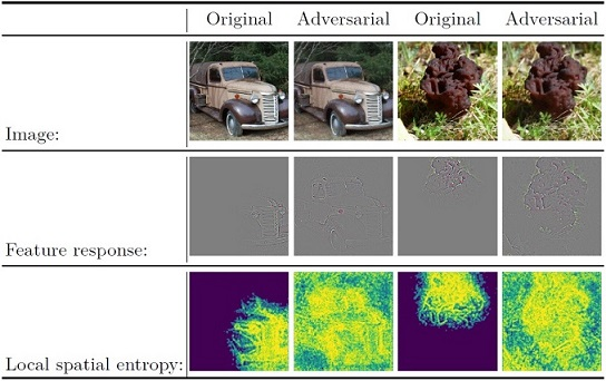 Detecting adversarial examples using local spatial entropy on feature response maps